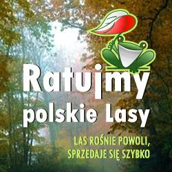 RatujLasy.niepoprawni.pl - Ratujmy polskie Lasy